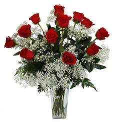 Dozen Long Stem Red Roses From Rogue River Florist, Grant's Pass Flower Delivery