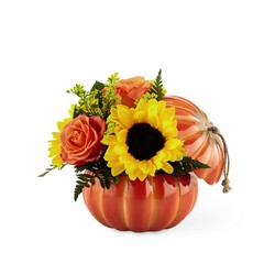 The FTD Harvest Traditions Pumpkin From Rogue River Florist, Grant's Pass Flower Delivery