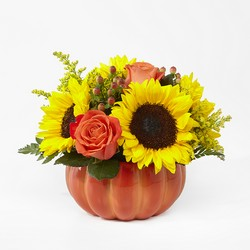 Harvest Traditions Pumpkin From Rogue River Florist, Grant's Pass Flower Delivery