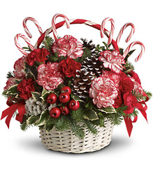 Candy Cane Christmas From Rogue River Florist, Grant's Pass Flower Delivery