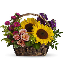 Picnic in the Park From Rogue River Florist, Grant's Pass Flower Delivery