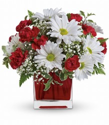 Red And White Delight by Teleflora From Rogue River Florist, Grant's Pass Flower Delivery